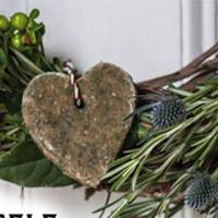 Ateliers cadeaux de Noël autour des plantes et du bien être